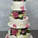 Stojan středový tři patra,dorty, potřeby pečení,svatební dort,dortový stojan,podnos dort,svatební podnosy,svatba,patrový podnos,dorty,muffiny,cupcakes,levné,Stojan středový tři patra,dorty, potřeby pečení,svatební dort,dortový stojan,podnos dort,svatební podnosy,svatba,patrový podnos,dorty,muffiny,cupcakes,levné,Stojan středový tři patra,dorty, potřeby pečení,svatební dort,dortový stojan,podnos dort,svatební podnosy,svatba,patrový podnos,dorty,muffiny,cupcakes,levné,Stojan středový tři patra,dorty, potřeby pečení,svatební dort,dortový stojan,podnos dort,svatební podnosy,svatba,patrový podnos,dorty,muffiny,cupcakes,levné,Stojan středový tři patra,dorty, potřeby pečení,svatební dort,dortový stojan,podnos dort,svatební podnosy,svatba,patrový podnos,dorty,muffiny,cupcakes,levné,Stojan středový tři patra,dorty, potřeby pečení,svatební dort,dortový stojan,podnos dort,svatební podnosy,svatba,patrový podnos,dorty,muffiny,cupcakes,levné,Stojan středový tři patra,dorty, potřeby pečení,svatební dort,muffin,dortový stojan,podnos dort,svatební podnosy,svatba,patrový podnos,dorty,muffiny,,dorty, potřeby pečení,svatební dort,muffin,dortový stojan,podnos dort,svatební podnosy,svatba,patrový podnos,dorty,muffiny,,dorty, potřeby pečení,svatební dort,muffin,dortový stojan,podnos dort,svatební podnosy,svatba,patrový podnos,dorty,muffiny,,dorty, potřeby pečení,svatební dort,muffin,dortový stojan,podnos dort,svatební podnosy,svatba,patrový podnos,dorty,muffiny,,dorty, potřeby pečení,svatební dort,muffin,dortový stojan,podnos dort,svatební podnosy,svatba,patrový podnos,dorty,muffiny,,dorty, potřeby pečení,svatební dort,muffin,dortový stojan,podnos dort,svatební podnosy,svatba,patrový podnos,dorty,muffiny,,dorty, potřeby pečení,svatební dort,muffin,dortový stojan,podnos dort,svatební podnosy,svatba,patrový podnos,dorty,muffiny,,dorty, potřeby pečení,svatební dort,muffin,dortový stojan,podnos dort,svatební podnosy,svatba,patrový podnos,dorty,muffiny,,dorty, potřeby pečení,svatební dort,muff