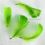 Peříčka 05 zelená.Peříčka 05 zelená,Peříčka 05 zelená,Peříčka 05 zelená,Peříčka 05 zelená,Peříčka 05 zelená,Peříčka 05 zelená,Peříčka 05 zelená,Peříčka 05 zelená,Peříčka 05 zelená,,výzdoba,svatba,svatební výzdoba,srdce,nevěsta,svatební šaty,ženich,výzdoba dveří,výroba,svatební výroba,levně,levné,svatba,peříčka,peříčko,,výzdoba,svatba,svatební výzdoba,srdce,nevěsta,svatební šaty,ženich,výzdoba dveří,výroba,svatební výroba,levně,levné,svatba,peříčka,peříčko,,výzdoba,svatba,svatební výzdoba,srdce,nevěsta,svatební šaty,ženich,výzdoba dveří,výroba,svatební výroba,levně,levné,svatba,peříčka,peříčko,,výzdoba,svatba,svatební výzdoba,srdce,nevěsta,svatební šaty,ženich,výzdoba dveří,výroba,svatební výroba,levně,levné,svatba,peříčka,peříčko,,výzdoba,svatba,svatební výzdoba,srdce,nevěsta,svatební šaty,ženich,výzdoba dveří,výroba,svatební výroba,levně,levné,svatba,peříčka,peříčko,,výzdoba,svatba,svatební výzdoba,srdce,nevěsta,svatební šaty,ženich,výzdoba dveří,výroba,svatební výroba,levně,levné,svatba,peříčka,peříčko,,výzdoba,svatba,svatební výzdoba,srdce,nevěsta,svatební šaty,ženich,výzdoba dveří,výroba,svatební výroba,levně,levné,svatba,peříčka,peříčko,Peříčka 05,výzdoba,svatba,svatební výzdoba,srdce,nevěsta,svatební šaty,ženich,výzdoba dveří,výroba,svatební výroba,levně,levné,svatba,peříčka,peříčko,Peříčka 05,výzdoba,svatba,svatební výzdoba,srdce,nevěsta,svatební šaty,ženich,výzdoba dveří,výroba,svatební výroba,levně,levné,svatba,peříčka,peříčko,Peříčka 05,výzdoba,svatba,svatební výzdoba,srdce,nevěsta,svatební šaty,ženich,výzdoba dveří,výroba,svatební výroba,levně,levné,svatba,peříčka,peříčko,Peříčka 05,výzdoba,svatba,svatební výzdoba,srdce,nevěsta,svatební šaty,ženich,výzdoba dveří,výroba,svatební výroba,levně,levné,svatba,peříčka,peříčko,Peříčka 05,výzdoba,svatba,svatební výzdoba,srdce,nevěsta,svatební šaty,ženich,výzdoba dveří,výroba,svatební výroba,levně,levné,svatba,peříčka,peříčko,Peříčka 05,výzdoba,svatba,svatební výzdoba,srdce,nevěsta,svatební šaty,ženich,výzdoba dveř