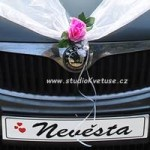 SPZ srdíčka na svatební auta (2)