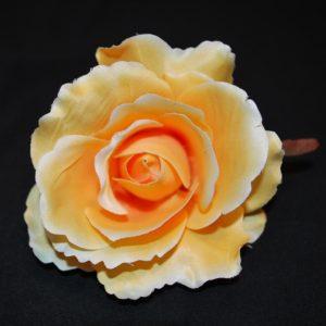 Květ růže 07 tmavý šampáň