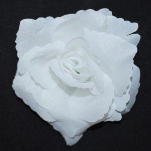 Květ růže 11 čistě bílý