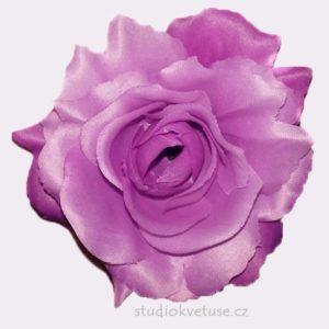 Květ růže 13 fialový