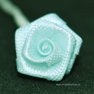 Růžička zelenkavá 27