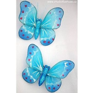 Motýlek 07
