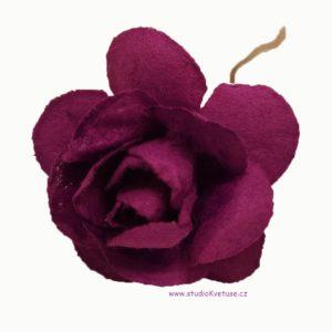 Růžička fialová 10