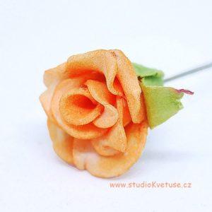 Růžička oranžová 11