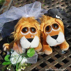 Lvíčci ve svatebním a