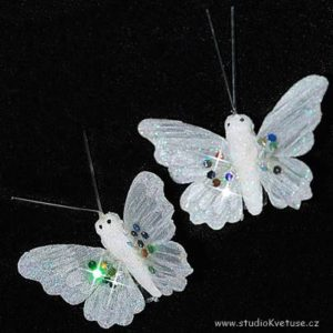 Motýlek 02