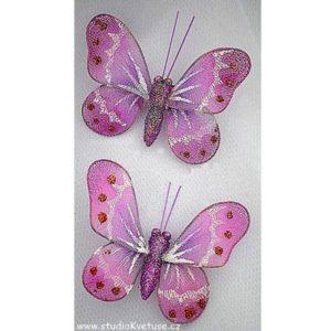 Motýlek 06