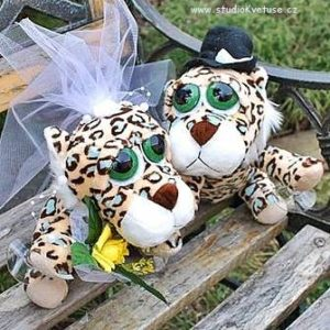Svatební gepardi na auto 01