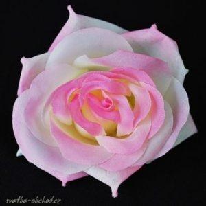 Květ růže 03 růžový bílý a