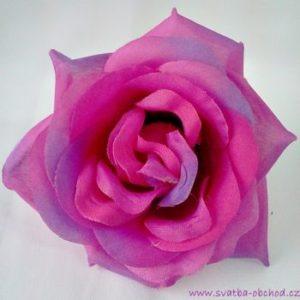 Květ růže 03 růžový fialový a
