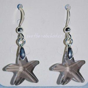 Náušnice 27 mořská hvězdice