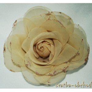 Růže 11 šampáň šifonová 11cm