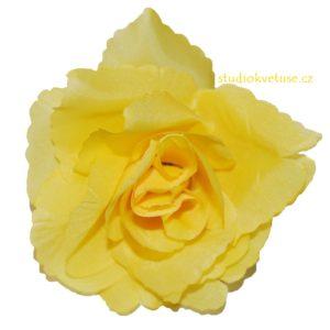 Květ růže 18 žlutý
