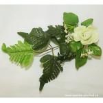 List růže zelený větší