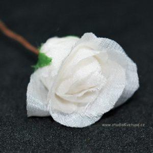 Růžička bílá 14