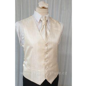 Pánská vesta 304